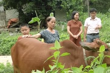 Quảng Bình: Rà soát các hộ nghèo, hộ cận nghèo
