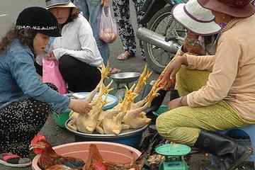Nam Định yêu cầu người dân không ăn tiết canh, không sử dụng thịt gia cầm ốm chết làm thực phẩm