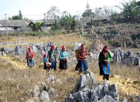 Hà Giang: Huyện Đồng Văn tạo sinh kế cho người dân xoá đói giảm nghèo