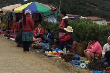 Sơn La phấn đấu giảm hộ nghèo còn 18,62%