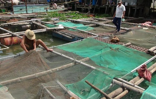 Tây Ninh kiến nghị điều chỉnh mục tiêu, vốn chương trình giảm nghèo giai đoạn 2021 - 2025