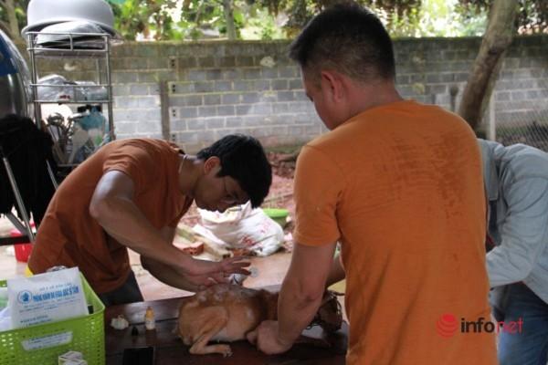 Thượng úy CSGT ở nhà thuê, cùng bạn dành tiền giải cứu hàng trăm chú chó