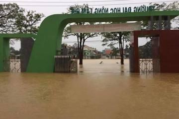 Hai trường ĐH được gia hạn thời gian cho sinh viên nhập học vì mưa lũ