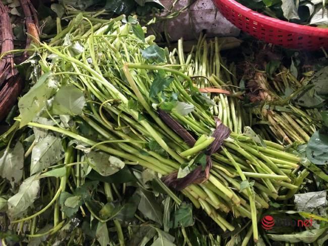 Mưa bão,Đà Nẵng,rau xanh,thực phẩm