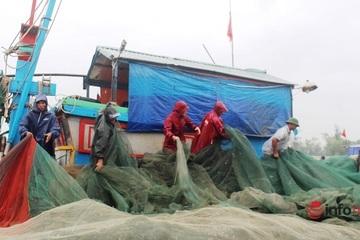 Nghệ An: Ngư dân đội mưa hối hả kéo tàu, dọn ngư cụ tránh bão