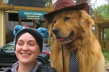 Điểm danh những chú chó đảm nhận công việc 'đặc biệt'