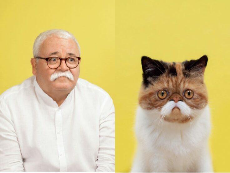 Những bức ảnh hài hước chứng minh mèo và chủ nhân là bản sao y đúc