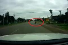 Clip bé ngồi sau xe máy mẹ chở ngã nhào xuống ngay trước mũi ô tô