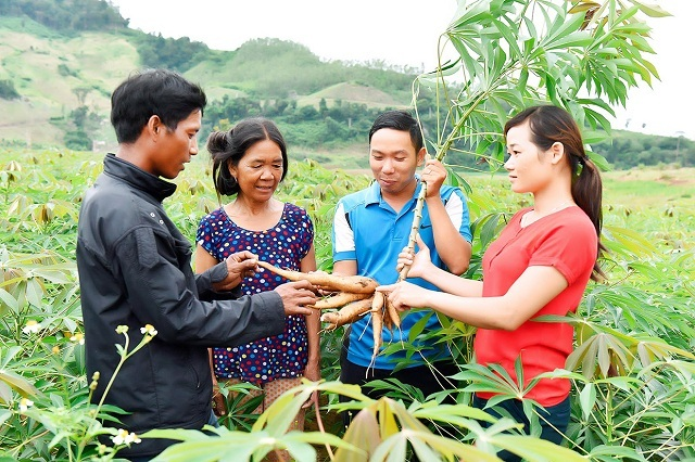 Mô hình hỗ trợ giảm nghèo sáng tạo, hiệu quả ở Phú Yên