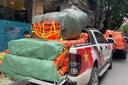 Nghệ sĩ Việt chở áo phao, đèn pin, nhu yếu phẩm cứu trợ miền Trung