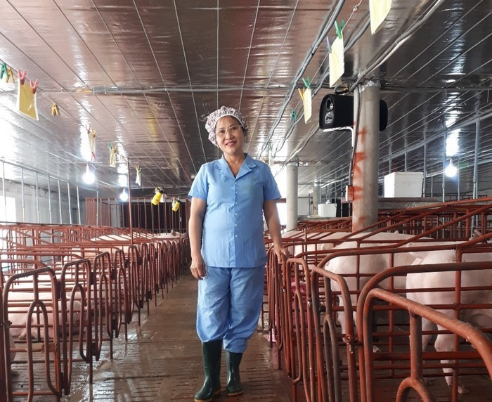 Chủ trang trại lợn Nguyễn Thị Anh Đào