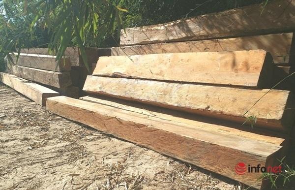 Sa thải Giám đốc và 2 cán bộ 'lơ là' bảo vệ rừng ở Kon Tum