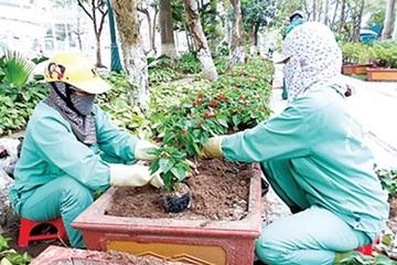 Thái Bình: Nhiều giải pháp thu hút đầu tư phát triển kinh tế ven biển