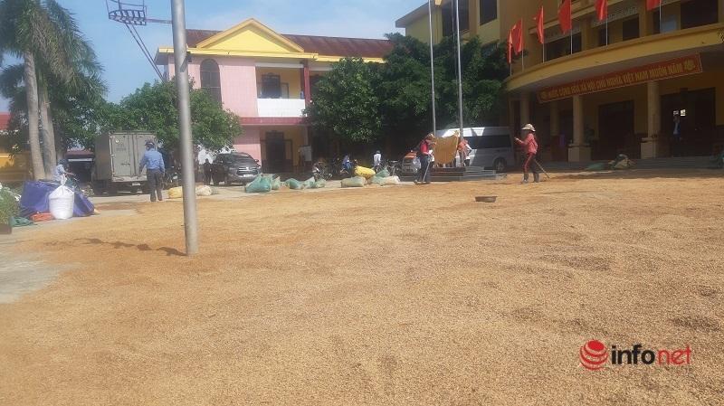 Quảng Bình: Nước rút, trời hửng nắng, người dân tranh thủ phơi lúa, công an giúp một tay