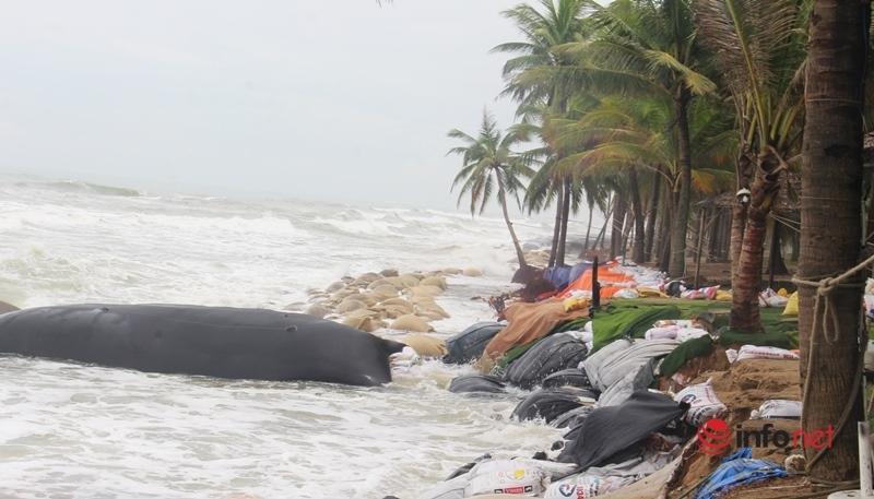 Quảng Nam: Bờ kè Cửa Đại bị sóng đánh tan hoang, quân dân chung tay gia cố kè biển