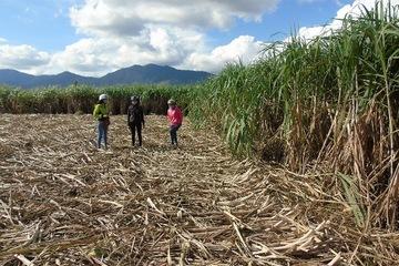 Đắk Lắk: Trăn trở giảm nghèo ở 2 huyện Lắk và M'Đrắk
