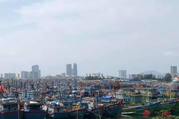 Bão số 9 đổ bộ vào Đà Nẵng – Phú Yên, gió giật mạnh, vùng ảnh hưởng rất rộng