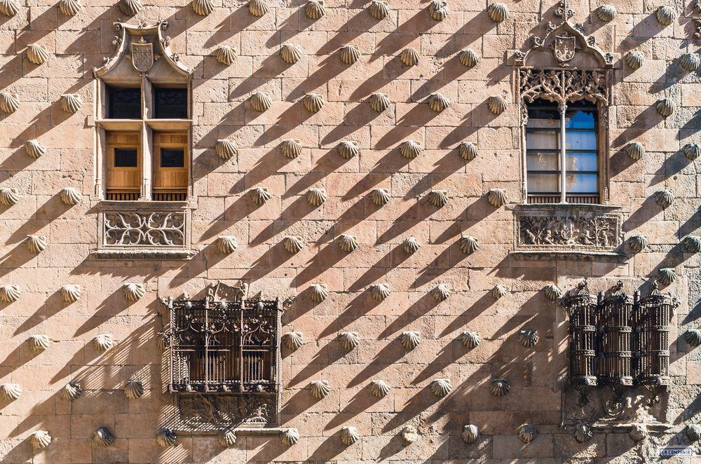 Cận cảnh tòa lâu đài vỏ sò hút khách du lịch ở Tây Ban Nha