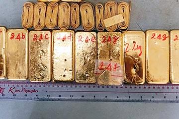 Bắt giữ 1 vụ vận chuyển hơn 50kg vàng ở An Giang, 3 đối tượng đã ra đầu thú