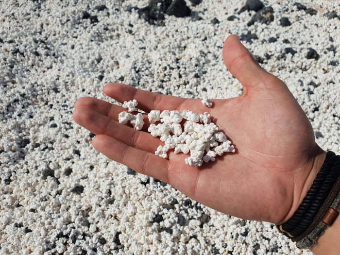 Cận cảnh bãi biển phủ đầy 'bắp rang bơ' trắng xóa