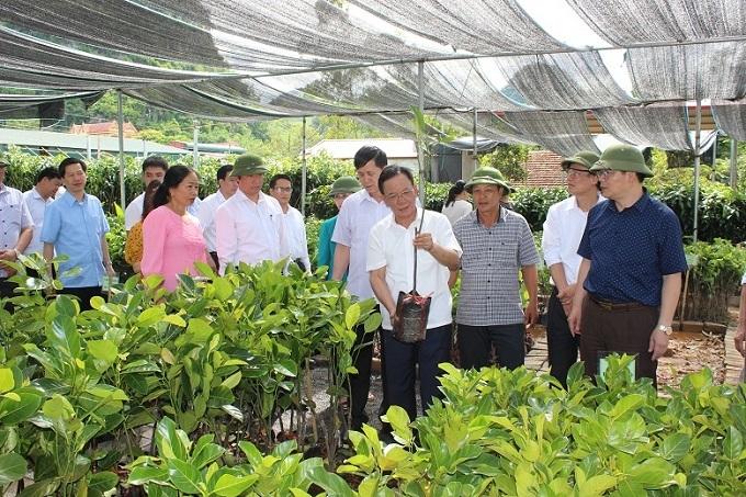 Sơn La chủ động sản xuất nông nghiệp ứng phó với biến đổi khí hậu