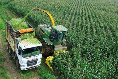 Ứng dụng khoa học kỹ thuật để phát triển bền vững ngành nông nghiệp