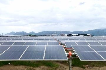 Dự kiến cuối năm 2020, Ninh Thuận sẽ có 37 dự án năng lượng tái tạo được vận hành