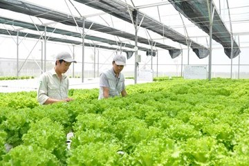 Lâm Đồng đạt mục tiêu phát triển nhanh và bền vững
