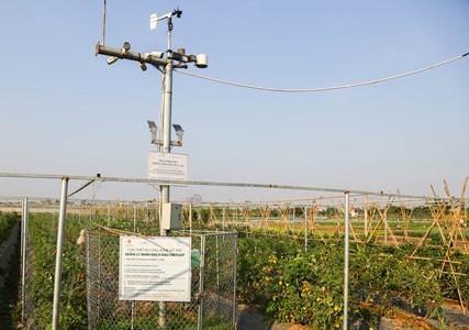 Hỗ trợ thúc đẩy sản xuất nông nghiệp bền vững bằng công nghệ 4.0