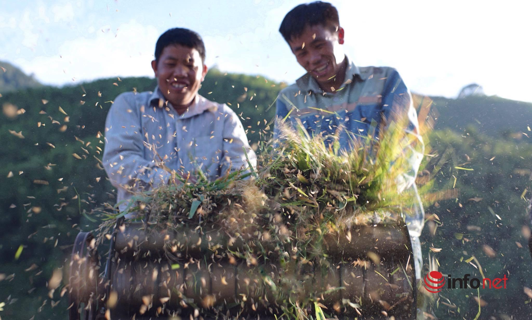 Bắc Kạn: Đẩy mạnh phát triển sản xuất để giảm nghèo bền vững