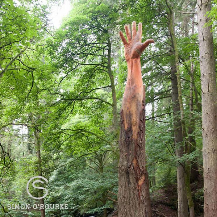 Hô biến cây gãy đổ trong bão thành tác phẩm nghệ thuật