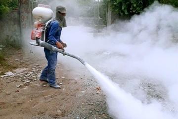 Ninh Bình: Tiêu hủy gần 3.000 con gia cầm mắc dịch cúm H5N6