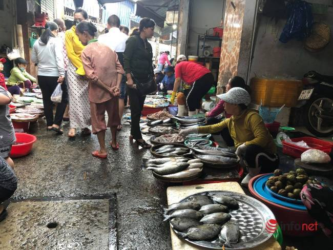 Rau xanh khan hiếm, đắt ngang thịt gà, cá, tiểu thương không dám nhập bán