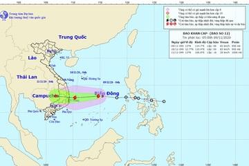 Khánh Hòa tập trung ứng phó với cơn bão số 12
