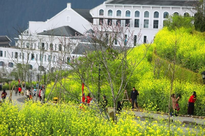 Sun World Fansipan Legend giữ vững ngôi vị 'Điểm đến du lịch hấp dẫn nhất Việt Nam'