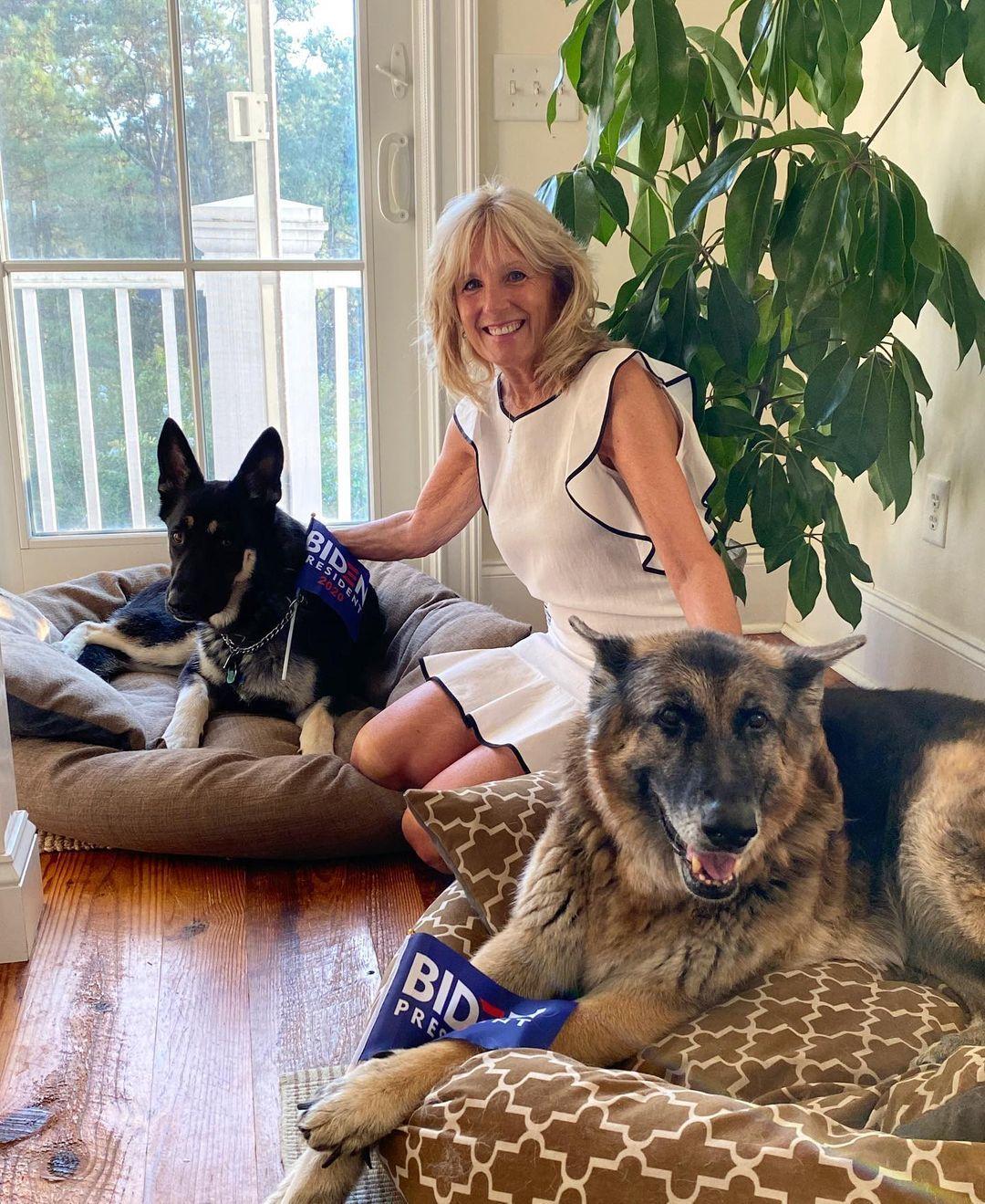 Chú chó của ông Biden sẽ là con vật 'vô gia cư' đầu tiên sống tại Nhà Trắng?