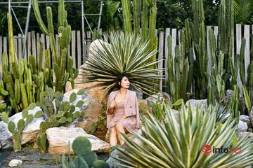 Giới trẻ Hà thành thích thú check-in vườn xương rồng đẹp như Đà Lạt