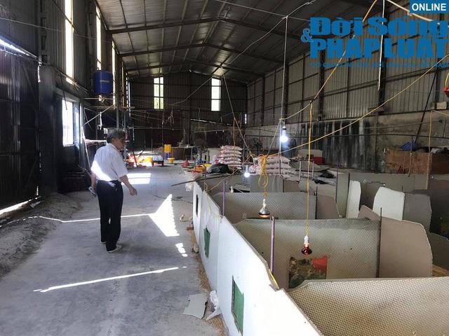 Ông chủ Vinaxuki sống nhờ 8 triệu lương hưu và đàn gà,  ông Trịnh Văn Quyết liên tục mua vào cổ phiếu FLC