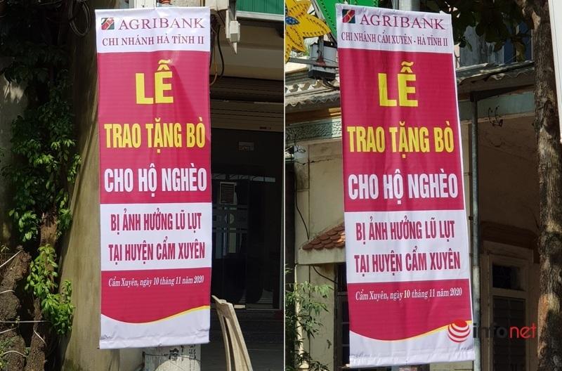 Hà Tĩnh: Con bò giúp người nghèo bị lũ 'đi lạc', ngân hàng hay xã 'dắt' nhầm chủ?