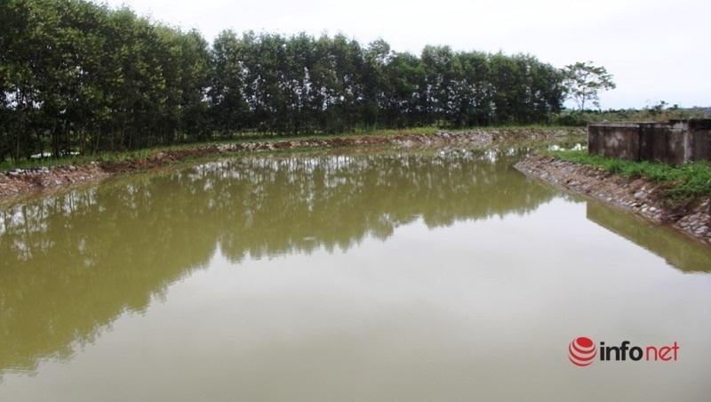 Công trình nước sạch dở dang biến thành ao nuôi cá, thả trâu ở Nghệ An