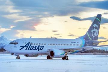Hi hữu: Máy bay va phải gấu trên đường băng khi hạ cánh