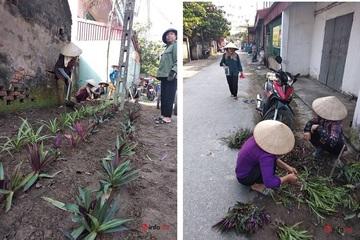 Chị em phụ nữ góp công, góp sức xây dựng miền quê đáng sống