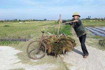 Khó khăn trong công tác giảm nghèo bền vững tại Thái Bình