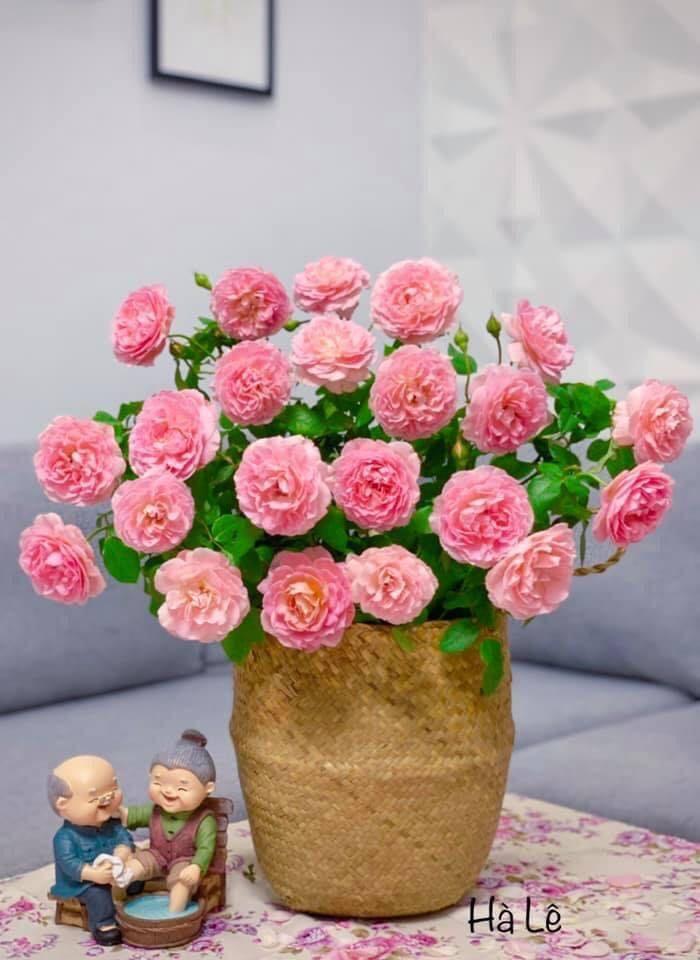 mẫu cắm hoa đẹp 3