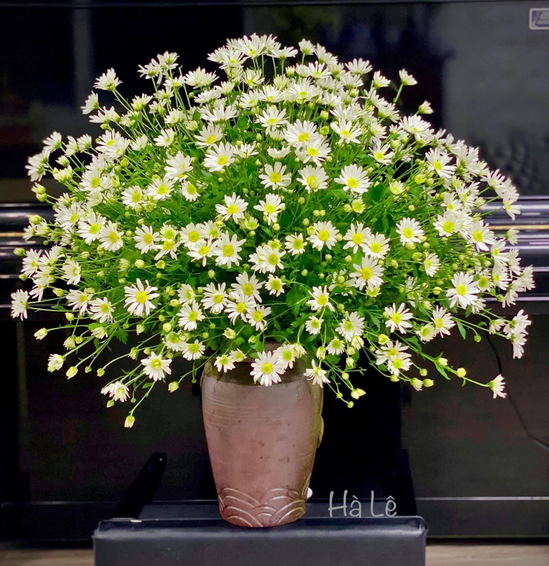 mẫu cắm hoa đẹp 1