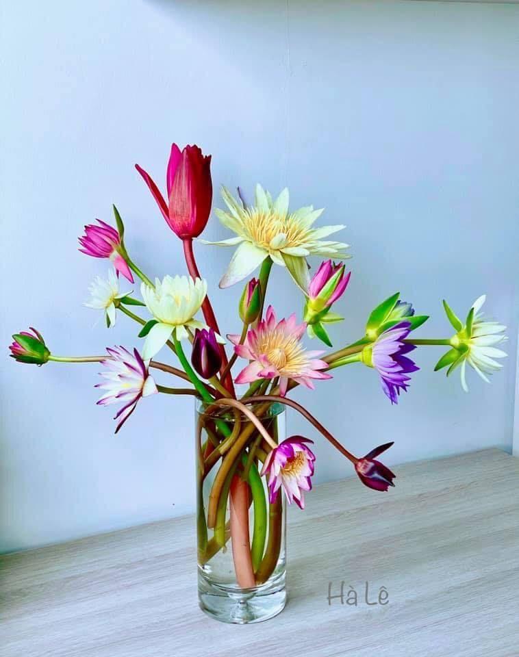 mẫu cắm hoa đẹp 9
