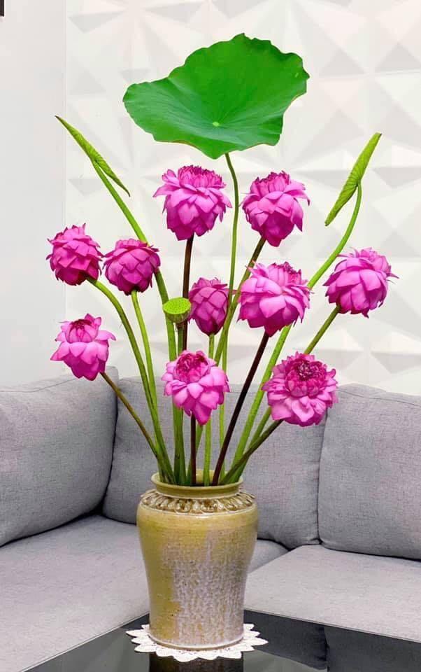 mẫu cắm hoa đẹp 14