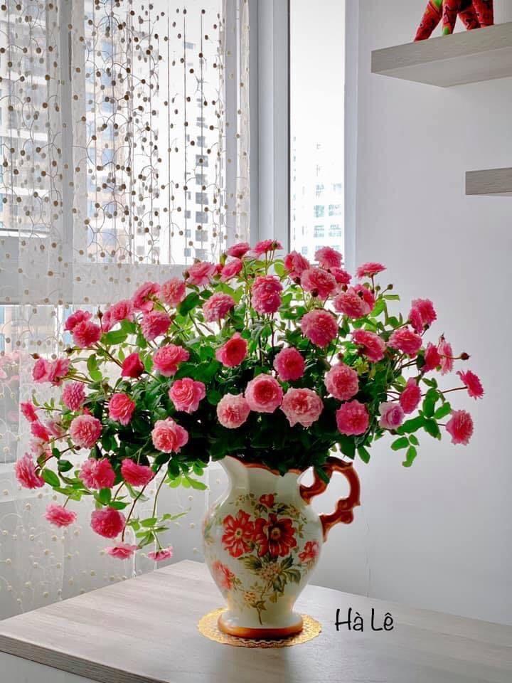cach cắm hoa đẹp nhất