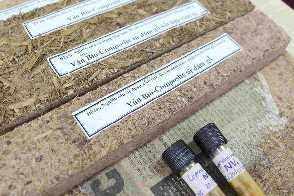 Công nghệ sản xuất ván bio-composite từ nguyên liệu dăm gỗ và rơm rạ