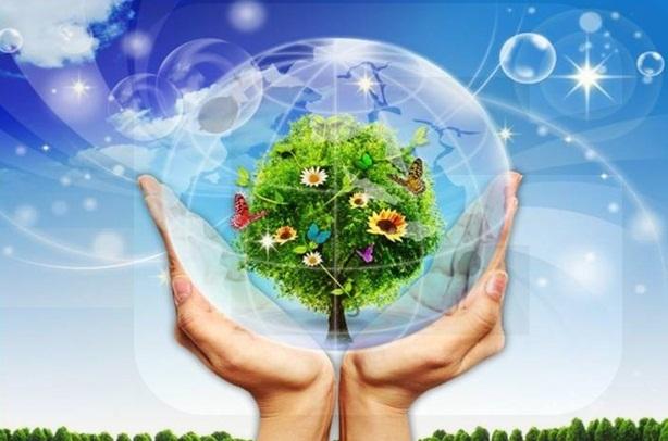 Tiền Giang đặt mục tiêu tiết kiệm 2% tổng điện năng tiêu thụ giai đoạn 2020 - 2025